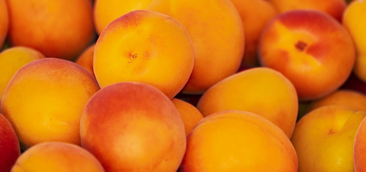 Bild: Früchte