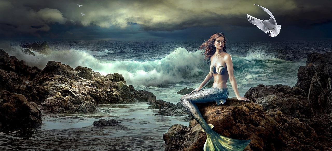 Bild: Meerjungfrau