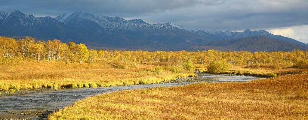 Bild: Tundra