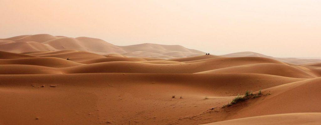 Bild: Wüste